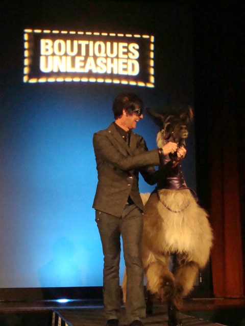{seth aaron henderson and smokey the llama}